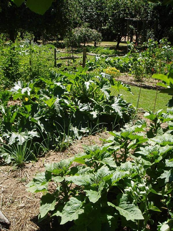 Lavandula - Swiss Italian farm, will be visiting again when back in town .Gardens Ideas, Houses, Gardens Inspiration, Farms Food, Las Casitas, Italian Farms, De Mis, Swiss Italian, My Dreams