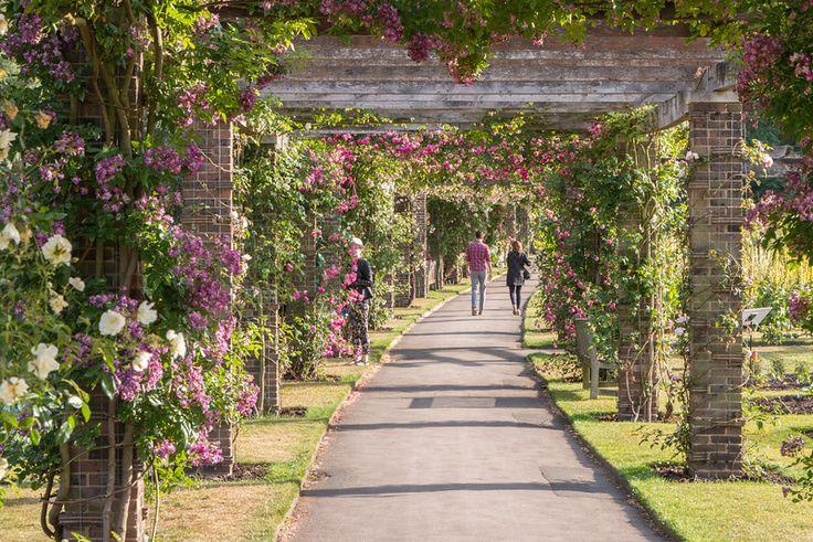 Afbeeldingsresultaat voor kew gardens london
