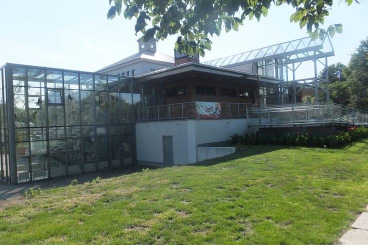 budynek wystawowy z kawiarnią - el. północno-wschodnia