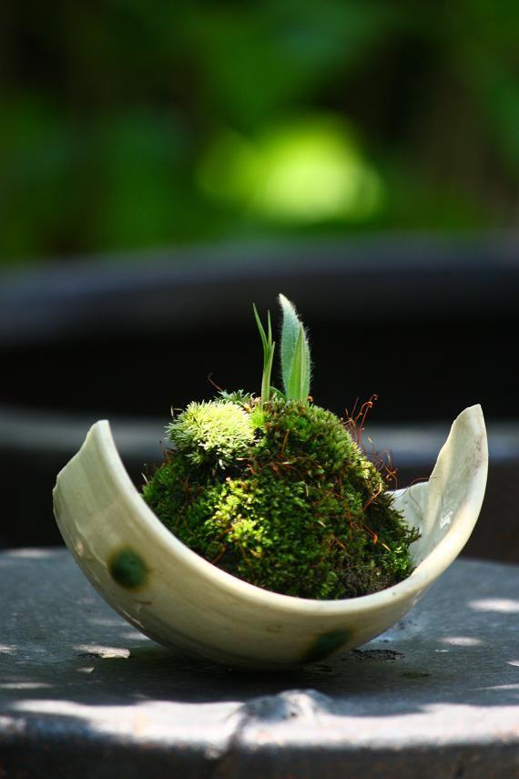 zen garden on pottery piece
