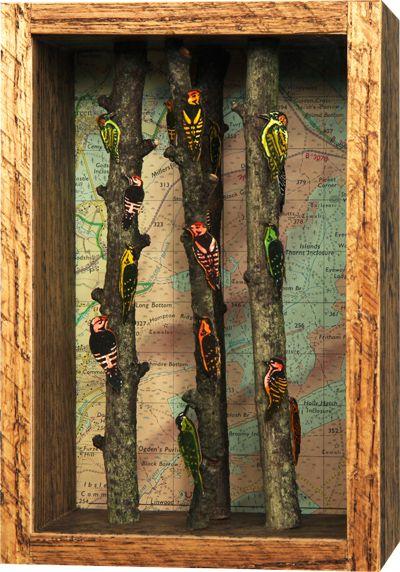 Woodpeckers - John Dilnot