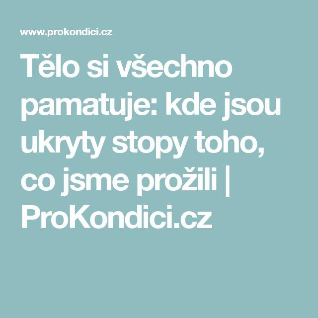 Tělo si všechno pamatuje: kde jsou ukryty stopy toho, co jsme prožili   ProKondici.cz