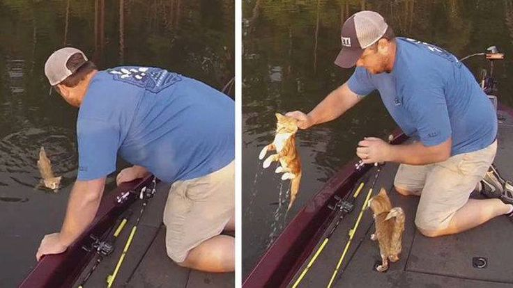 Two Guys Went For A Fishing And Rescued A Pair Of Kittens (VIDEO)