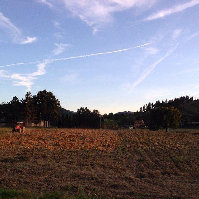 Summer landscape in Mugello