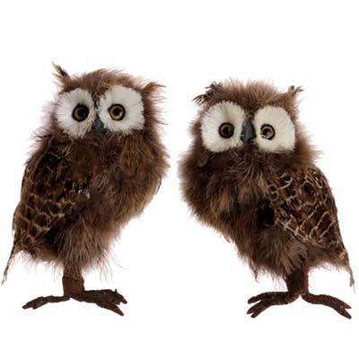 RAZ Feathered Owl