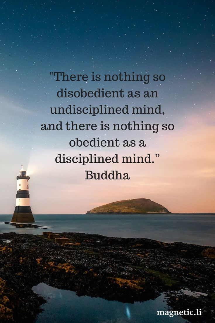 If your thoughts are all over the place you won't be able to focus on anything. Meditation helps you become aware of your thought process. Read my blog post to find out if Zen12 really works, and if it's right for you.