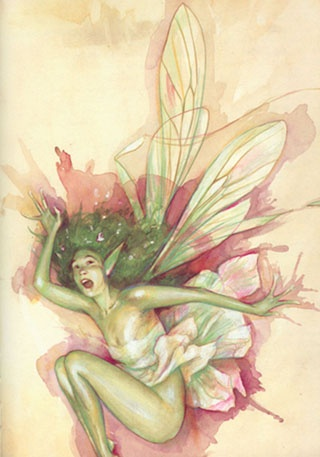 Brian Froud Picture Gallery