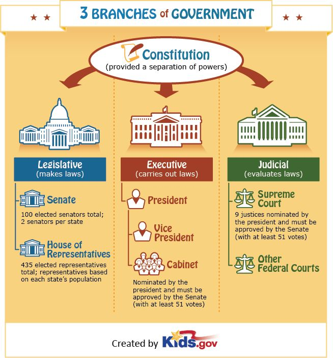 Infographic on the Three Branches of Government set up by the US Constitution.