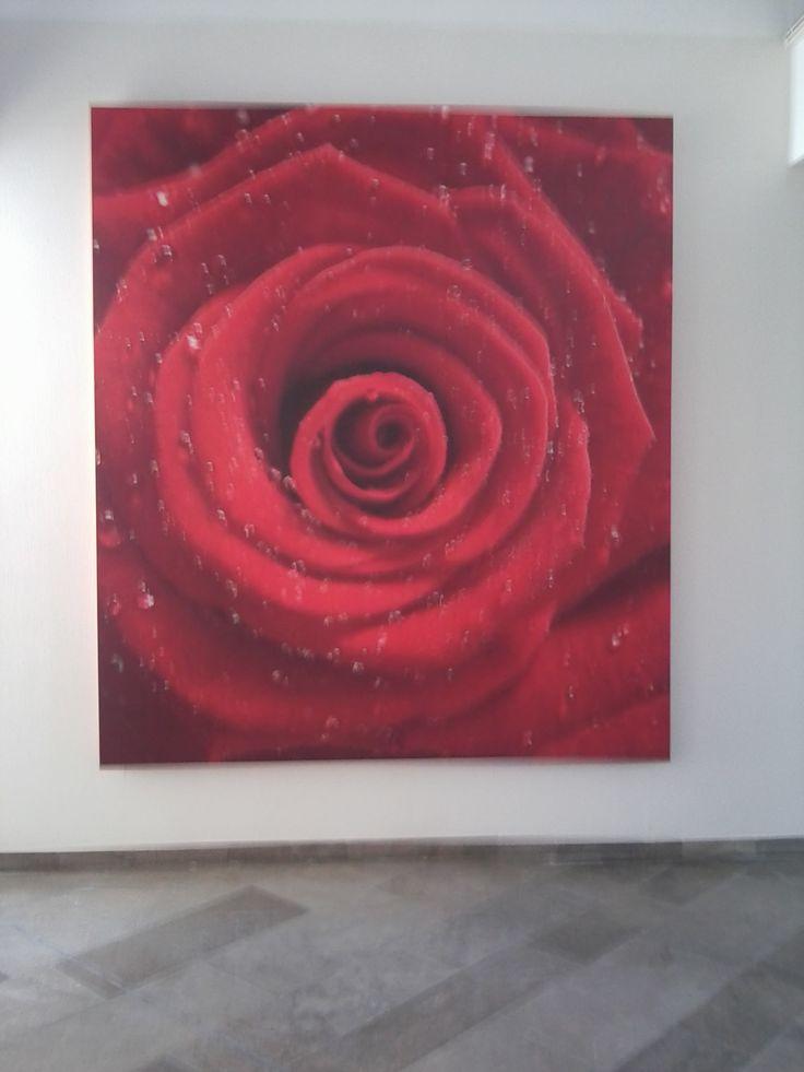 7 besten Tapete Bilder auf Pinterest   Teppiche, Fototapete und ...