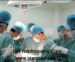 Berger's Disease is also known as IgA Nephropathy, which is caused by Immunoglobulin A. When it develops to kidney failure, kidney transplant becomes a favor for patients. But is kidney transplant really a good choice? In the following, we will discuss about the outlook for kidney transplant with Berger's Disease.