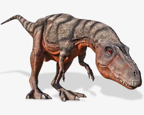 Bałtów - Park Dinozaurów