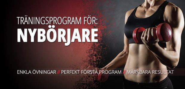 Styrketräningsprogram för nybörjare   Muscles.se - Styrketräning, styrkeövningar, motion & hälsa