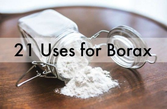 Uses+For+Borax+Around+The+House