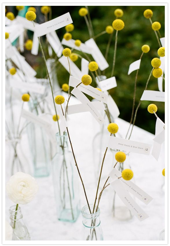 Escort cards tied on to buds