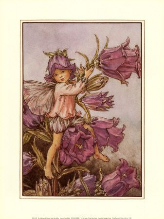 the Canterbury Bell fairy