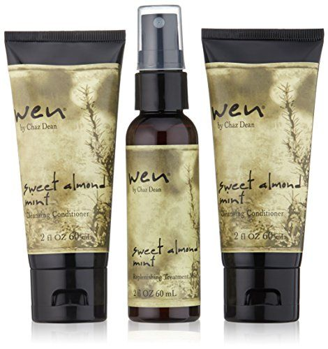 WEN by Chaz Dean On-The-Go Travel Kit