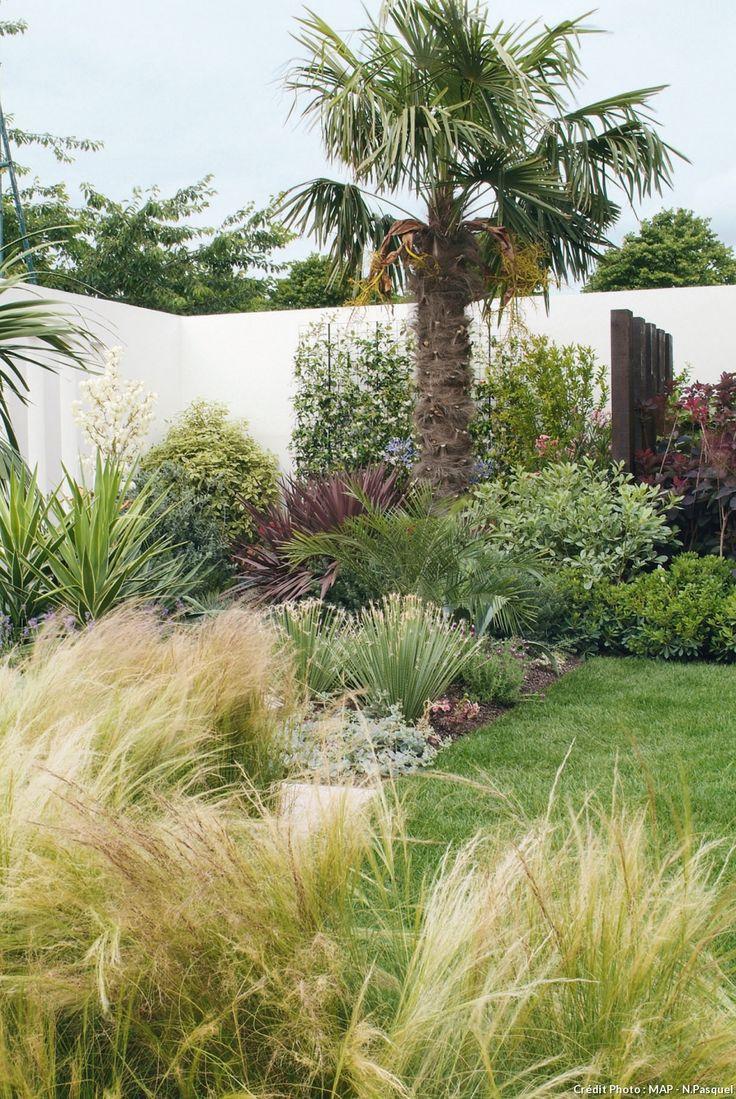Palmier et graminées. Le palmier chanvre (Trachycarpus fortunei), super résistant au froid (jusqu'à - 18/-20 °C), trône majestueusement dans un coin ; les cheveux d'ange (Stipa tenuissima) apportent légèreté et douceur dans ce jardin très structuré. Ces graminées sont rustiques jusqu'à -15 °C.