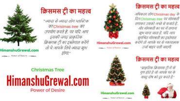 क्रिसमस ट्री का महत्व, क्रिसमस ट्री के 5 अनमोल गुण