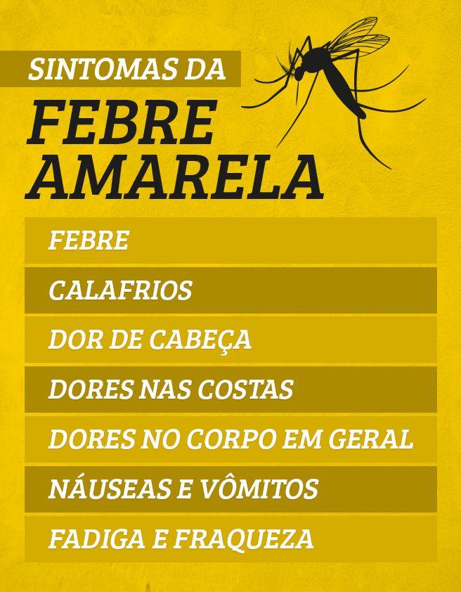 A febre amarela é uma doença infecciosa grave que pode ser transmitida pela picada de dois tipos de mosquitos, o Aedes Aegypti, ou o Haemagocus Sabethes. Essa doença causa sintomas como dor abdominal, dor de cabeça e febre e deve ser tratada de forma a aliviar os sintomas.