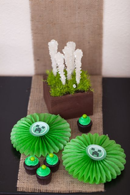 "Photo 1 of 37: MineCraft / Birthday ""MineCraft Birthday Party "" | Catch My Party"