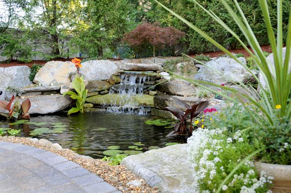 Front yard pond ideas yard koi pond no fence no for Front yard fish pond