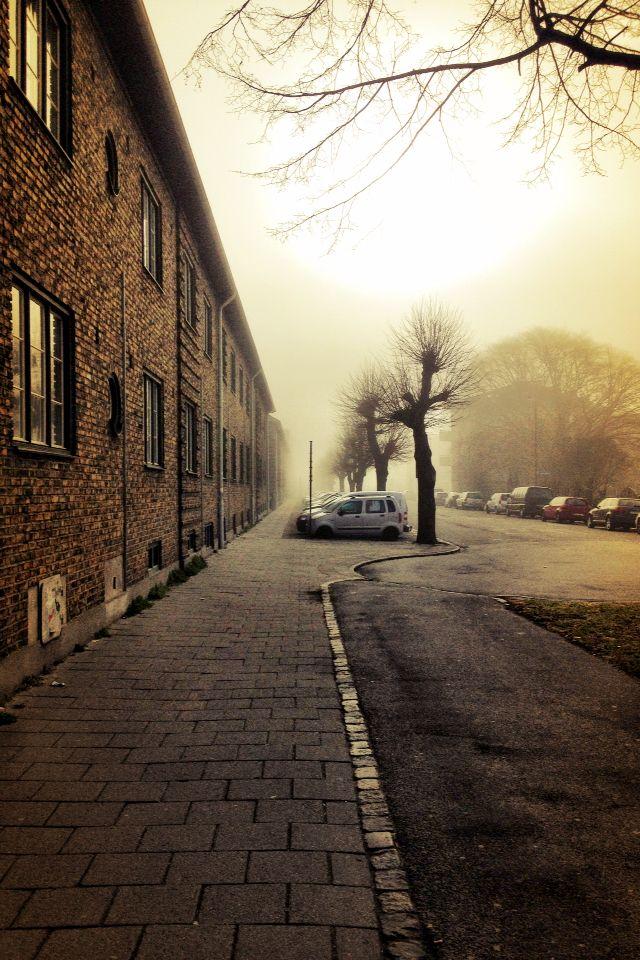 Foggy Sunday morning in April