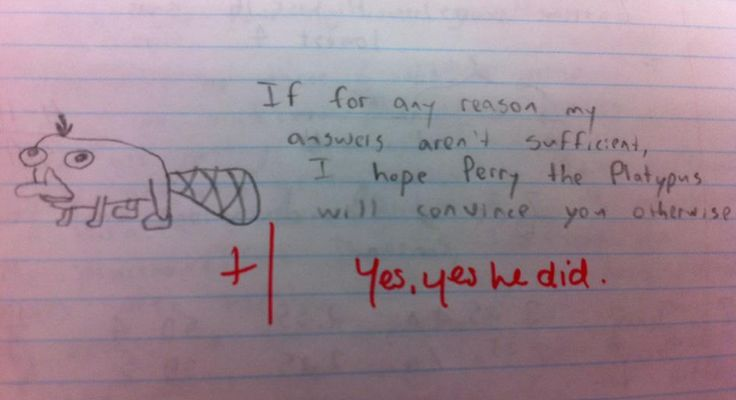 My favorite part of this is that the teacher gave him an extra point.
