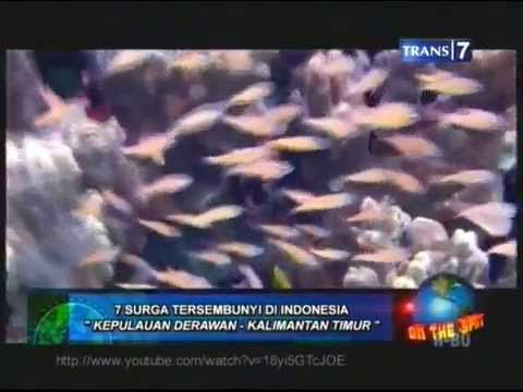 7 Tempat Wisata Terindah di Indonesia   http://www.javatoursurabaya.blogspot.com/