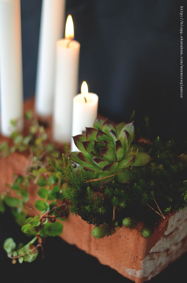 Easiest candleholder ever - and SO beautiful!! Brick (with holes)+plants+candles. Done and stunning! From mormorsglamour.