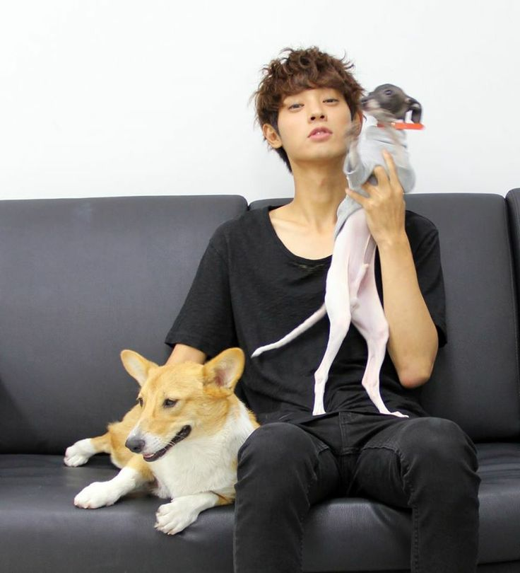 141003 - Jung Joon Young and his dogs