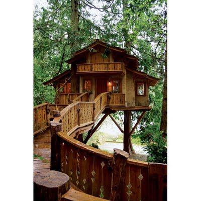 Best Tree Houses Images On Pinterest Treehouses Amazing Tree