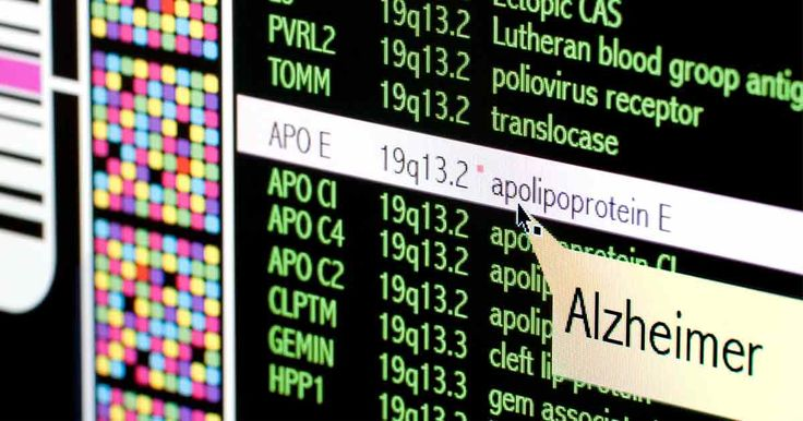 APoE4 is the gene most often associated with Alzheimer's disease, but now research suggests a different gene, TOMM40, may play an even bigger role. https://articles.mercola.com/sites/articles/archive/2017/10/05/alzheimers-disease-new-genetic-culprit-found.aspx?utm_source=dnl&utm_medium=email&utm_content=art2&utm_campaign=20171005Z1_UCM&et_cid=DM160709&et_rid=74385161