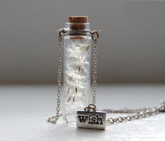 Dandelion seeds in a bottle. Want so bad.: Makeawish, Dreams, Gifts Ideas, Make A Wish, Cute Ideas, Seeds, Dandelions, Jars, Bottle Necklaces