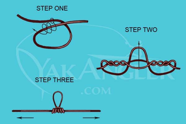 Best 25 best fishing knot ideas on pinterest tying for Learn how to fly fish