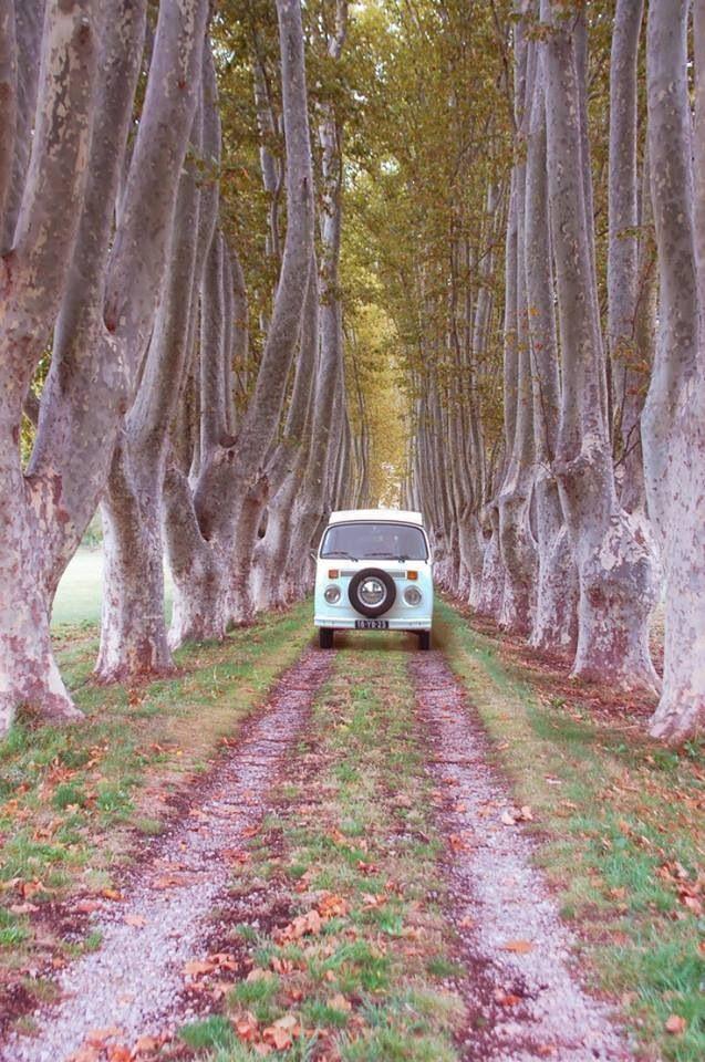 What a beautiful road plus kombi