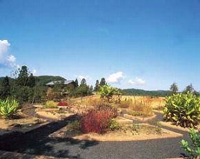 Fukui Botanical Garden Plantpia Asahi is the largest botanical garden on the Japan Sea coast. Located in Echizen, Fukui prefecture.