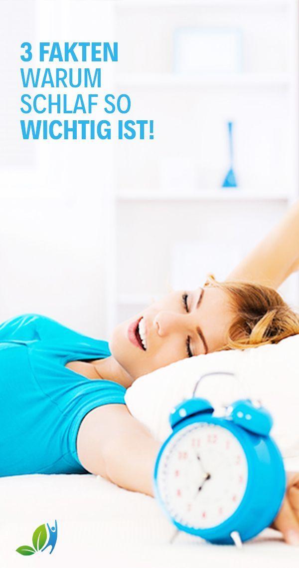 Warum Schlaf So Wichtig Ist Schlaf Dich Gesund Ist Ein Gut