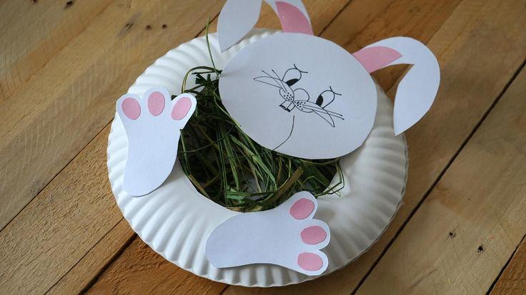 Zajíc z papírových talířů III. - Tento zaječí obličej jsme vytvořili slepením dvou papírových talířů.V tom vrchním jsme vystřihnuli díru a vnitřek naplnili lýkem. Hlava a uši jsou z tvrdého papíru. ( DIY, Hobby, Crafts, Homemade, Handmade, Creative, Ideas, Handy hands)