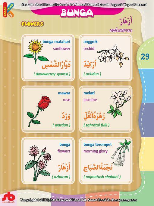Kamus Bergambar Anak Muslim Nama Nama Bunga Bahasa Indonesia Inggris Arab Bahasa Buku Membaca