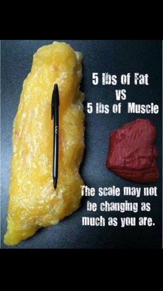 Non scale victories are more important! Always measure when trying to lose weight