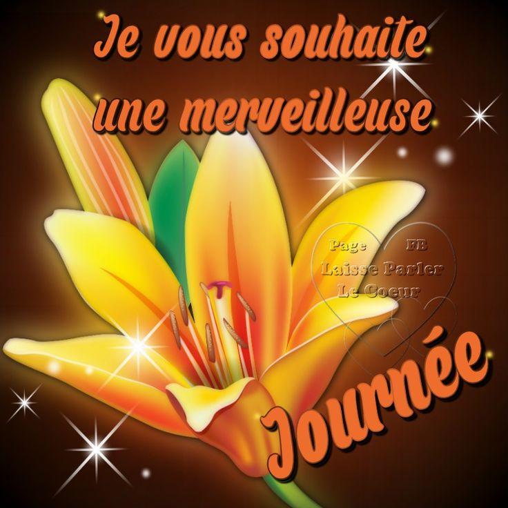 Je vous souhaite une merveilleuse journée #bonnejournee