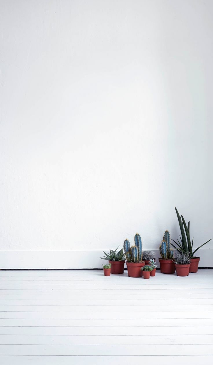 clean aesthetic, minimalist iphone – #4kaestheticwallpaper #animeaesthetichdwall…
