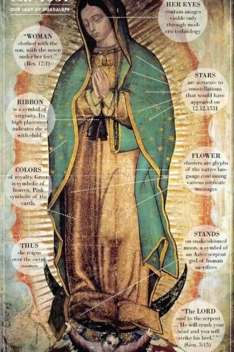 Our Lady of Tepeyac, Mother of Conversion