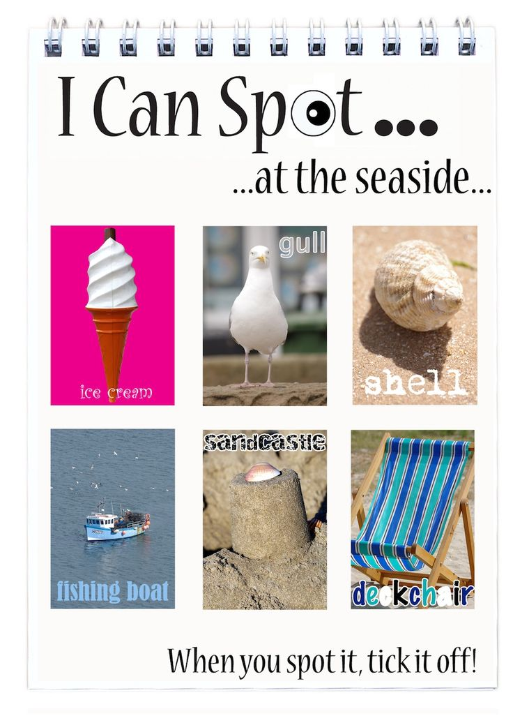 I Can Spot... at the seaside - Flip Book.  Aimed at toddlers just old enough to know that books aren't for eating until approximately the age of 7.  Twenty four internal pages. That's twenty four photographs of things to spot and tick off!