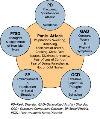 Panic Attacks, Panic Disorder, Generalized Anxiety Disorder, Obsessive Compulsive Disorder, Social Phobias and Post Traumatic Stress Disorder