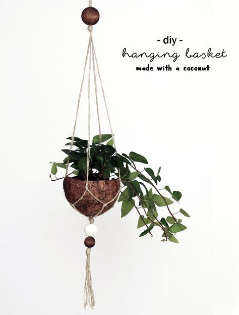 Making a coconut: macrame flower basket