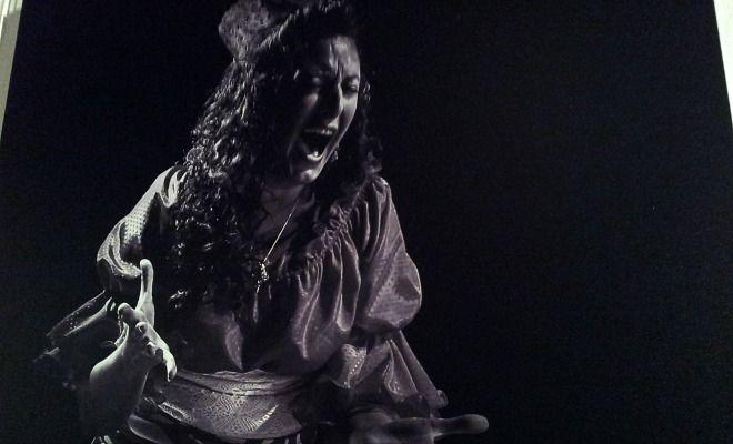 L'éternité de l'instant flamenco au Musée Despiau-Wlérick de Mont-de-Marsan