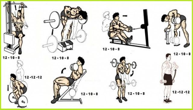 Back and Biceps Workout | bodybuilding | Pinterest