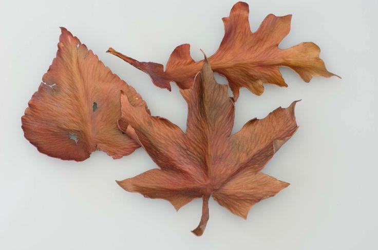 Anodized aluminum autumn leaves by Stephanie Elderfield 2014