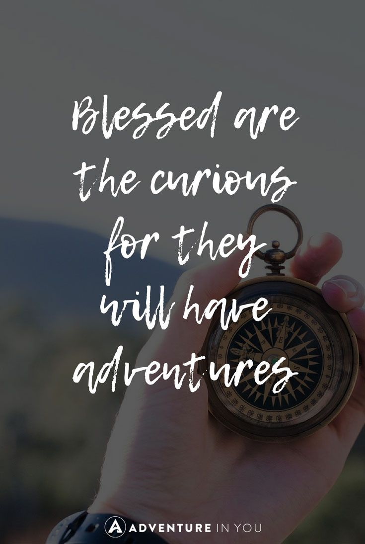 blessed are the curious for they will have adventures